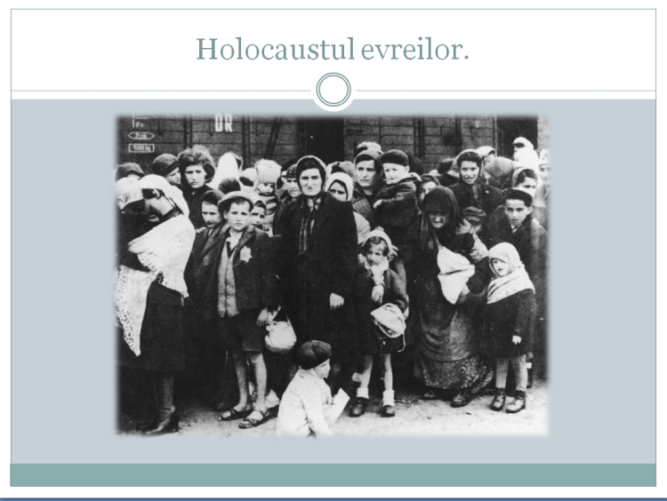 Holocaustul evreilor